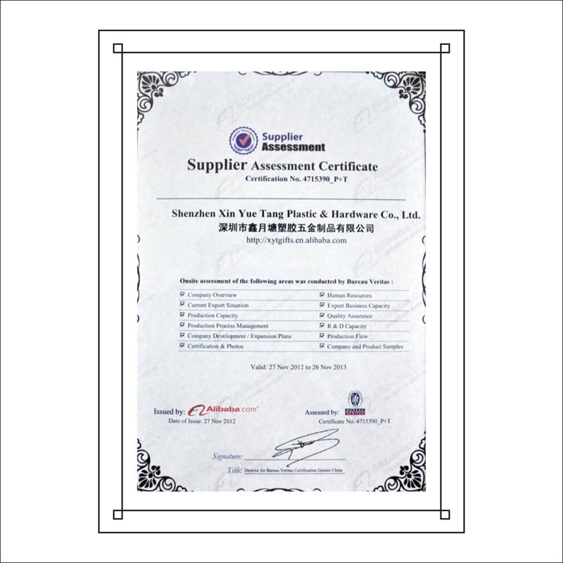 Supplier Assessment Certificate by BUREAU VERITAS